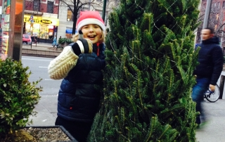 The Christmas Tree Hunt-City Style